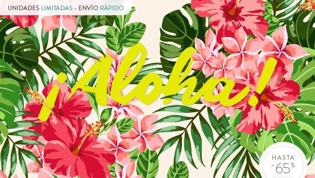 Bienvenido a Hawai