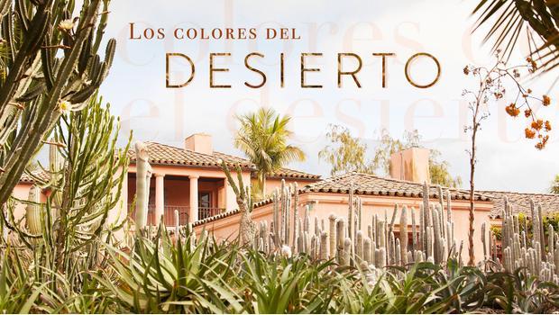 Los colores del desierto