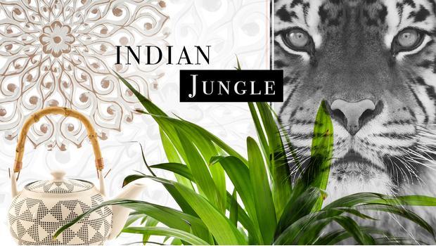 Viaje a la selva india