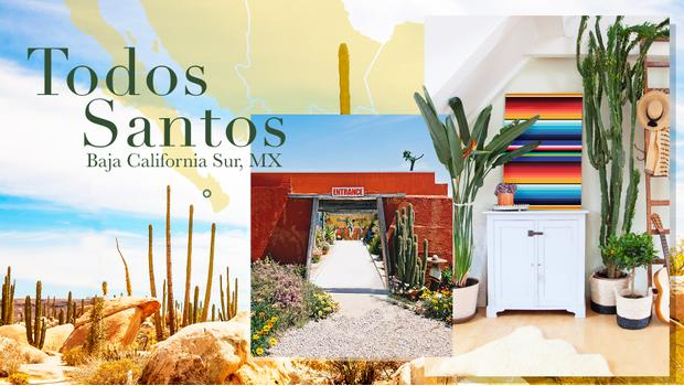 Viaje a Todos Santos