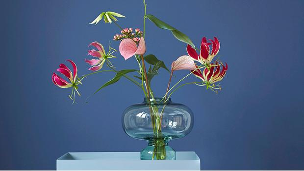 Plantas y flores exóticas
