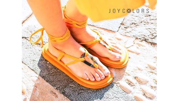 Joy Colors