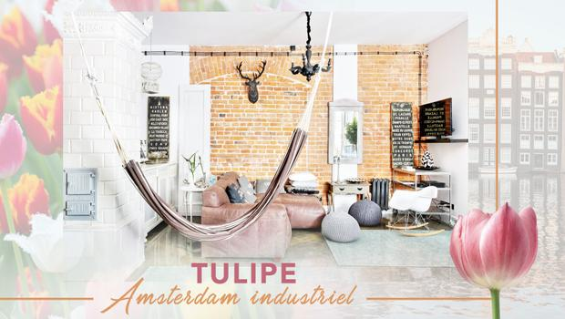 Belle tulipe