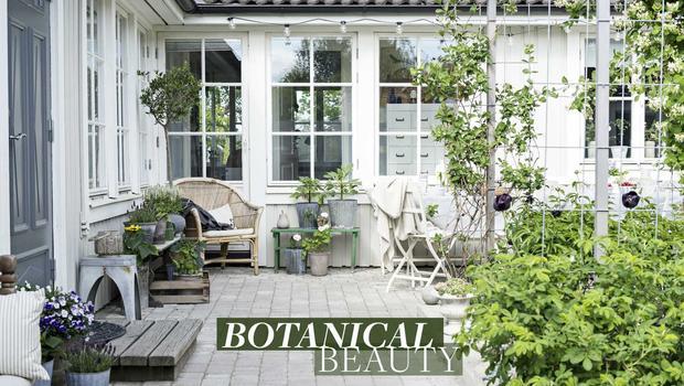 La tendance botanique