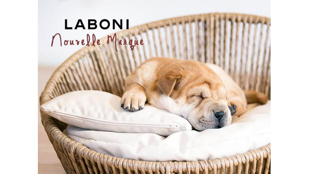 LABONI for dogs
