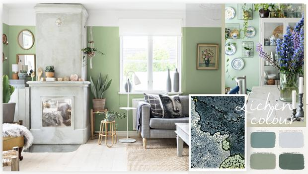 Trend-alert : le lichen