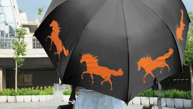 The San Francisco Umbrella