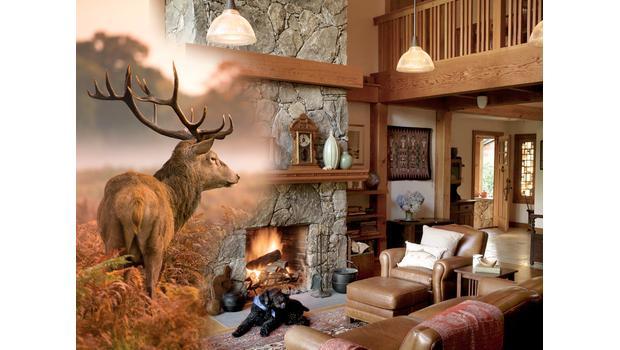 Inspiration pavillon de chasse