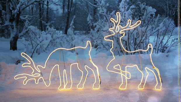 Un Noël sous les lumières