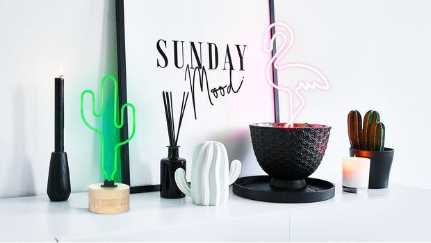 Dalani Trend: Luci al Neon!