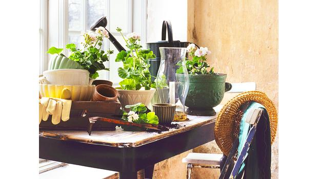 Giardinaggio con Stile