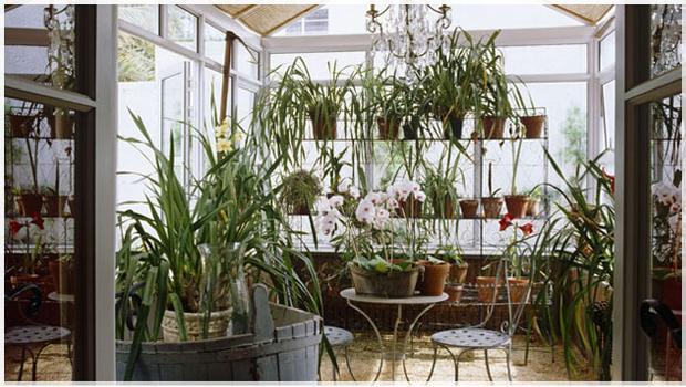 Giardino Dinverno In Casa : Giardino d inverno l outdoor e la casa westwing
