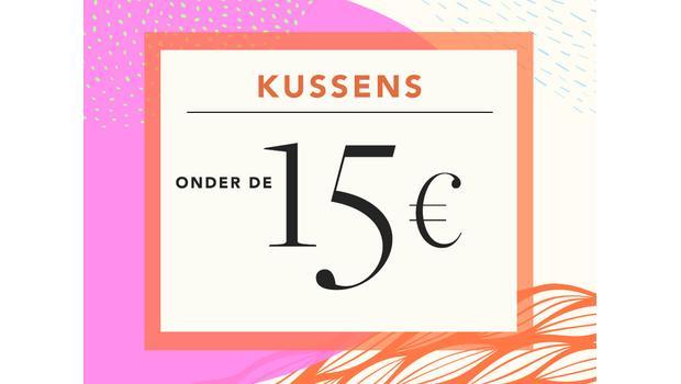 Kussens onder de €15