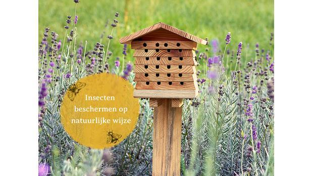 Tip voor in de tuin