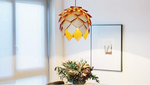 Liefde voor de lamp