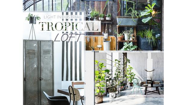 Tropical loft