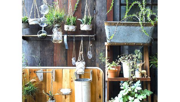 Stylowy ogród