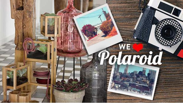 We love Polaroid