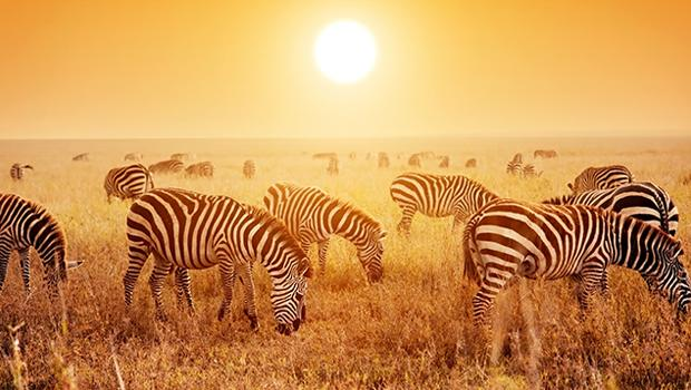 Afrykańskie ciepło