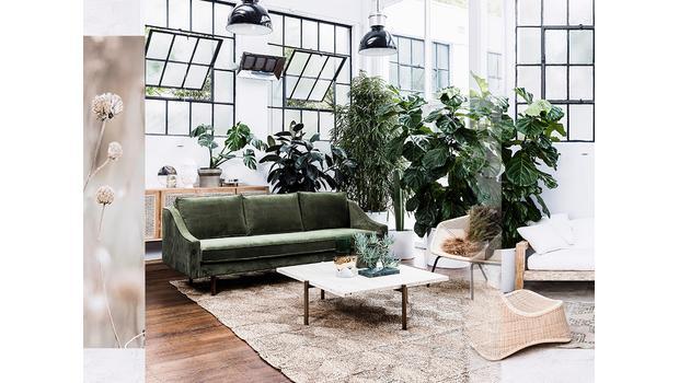 Summer botanical