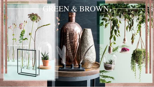 Green & Brown