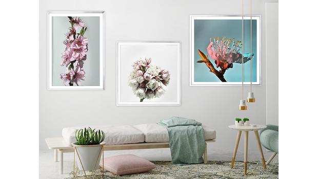Portrety kwiatów