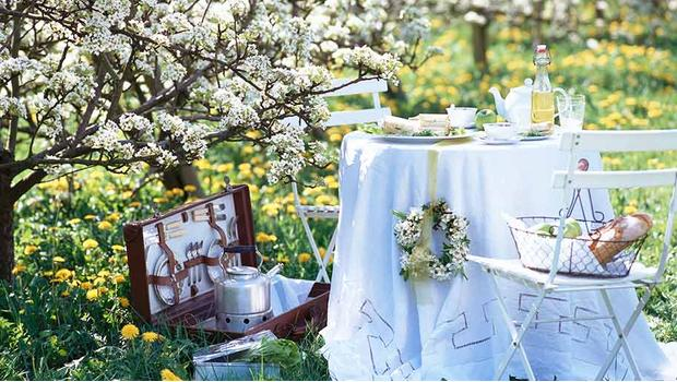 Ogród tęskni za wiosną