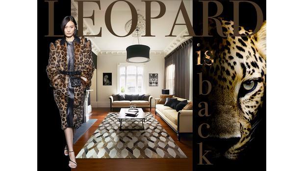 Leopard is back!