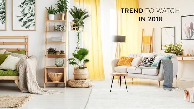 Trend: organic modern