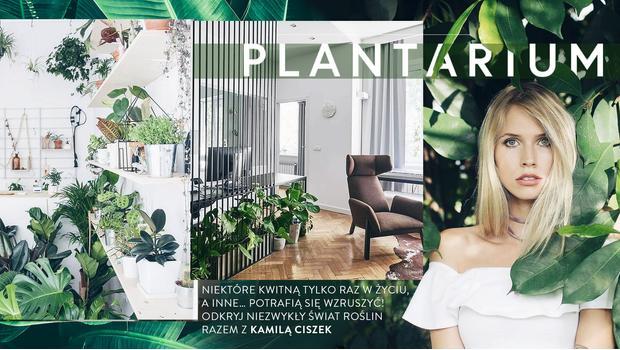 Trendbook: rośliny sezonu