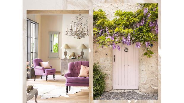 Dom w kwitnącej wisterii