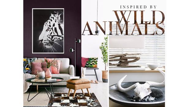 Zvieracie motívy sú všade!