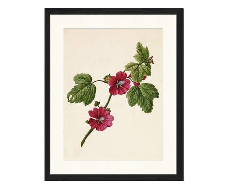 eb9acf013a ... Stampa artistica su carta con cornice Flowers 1, 43x53 cm Verifica la  disponibilità ...