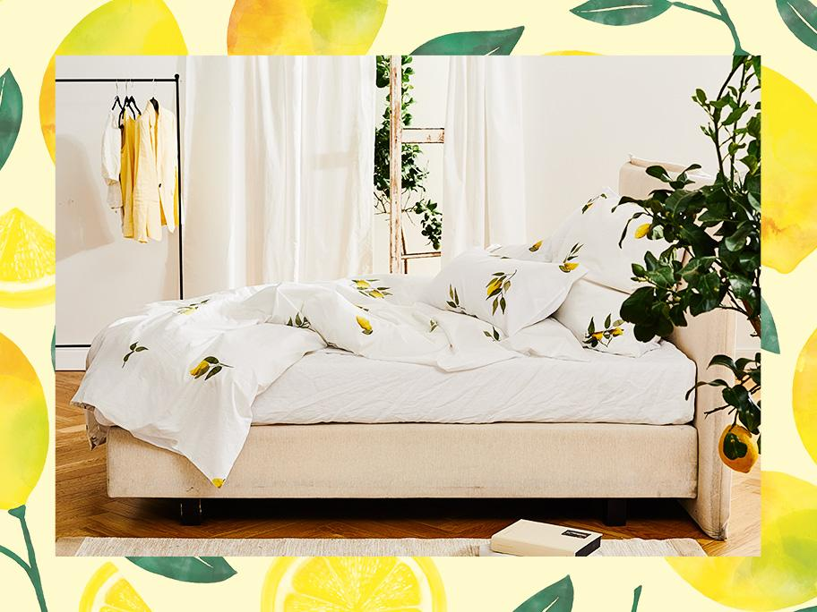 Der Zitronen-Trend zum Träumen