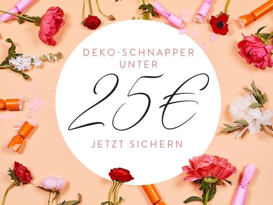 Deko-Schnapper unter 25 €