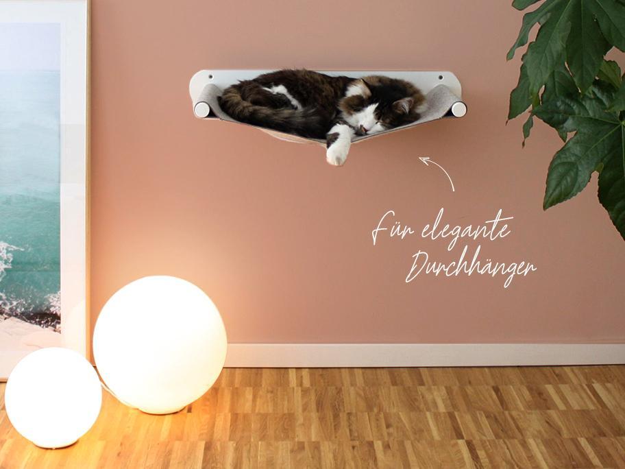 Accessoires für Luxus-Kätzchen