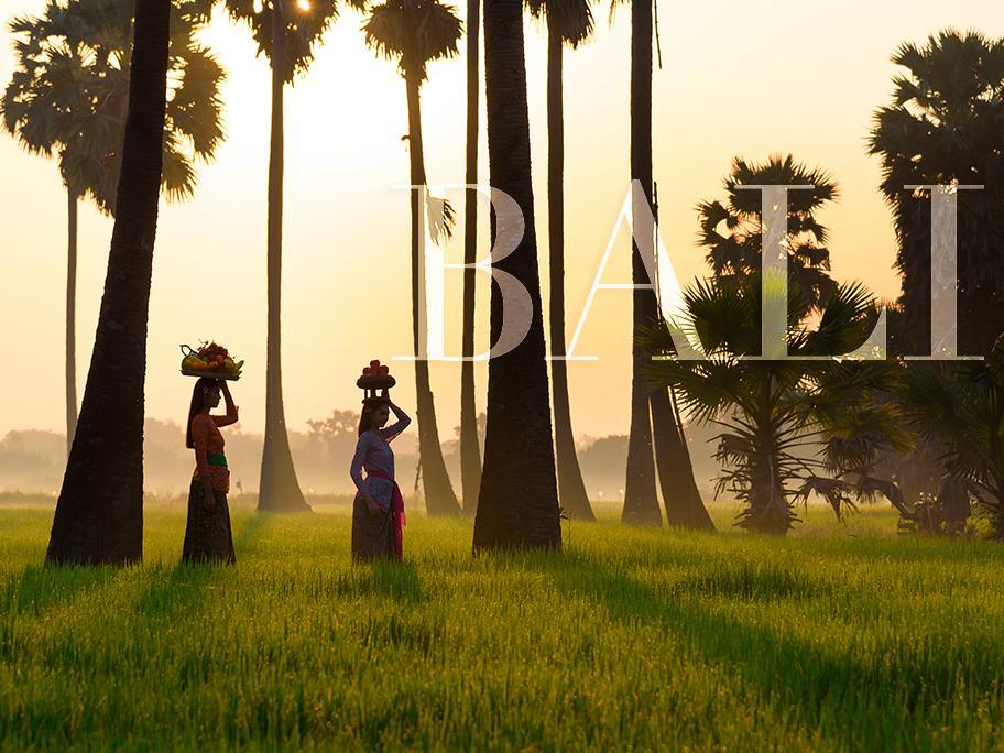 Bali en enero