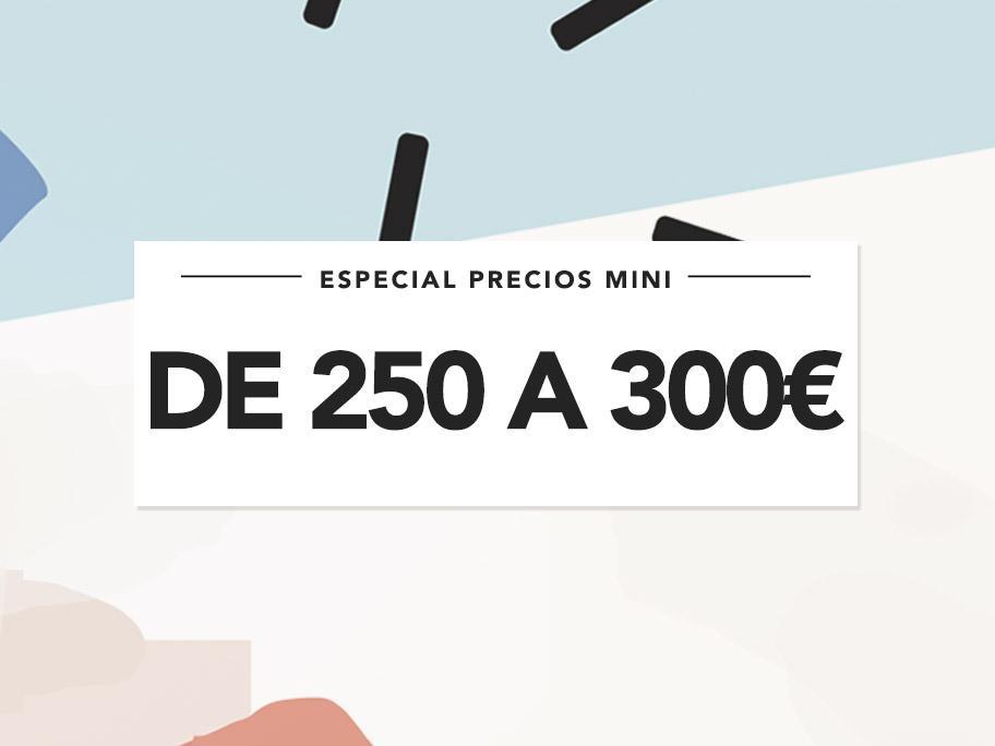 De 250 a 300€