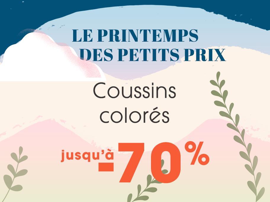 Coussins colorés