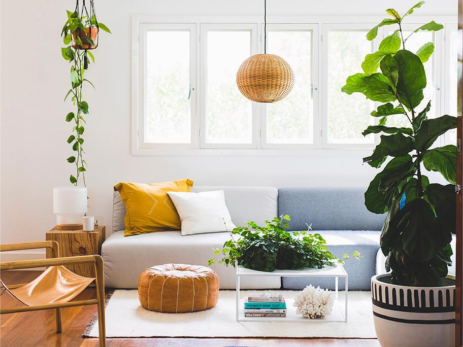 Cultivez votre jardin indoor