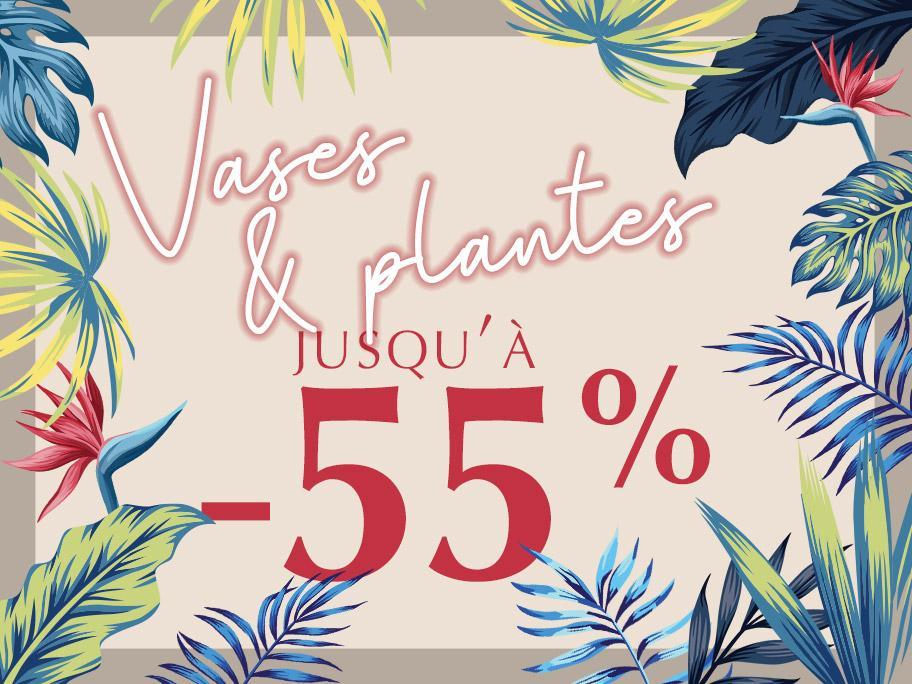 Vases & plantes