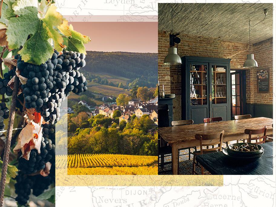 Bourgogne, au cœur des vignes