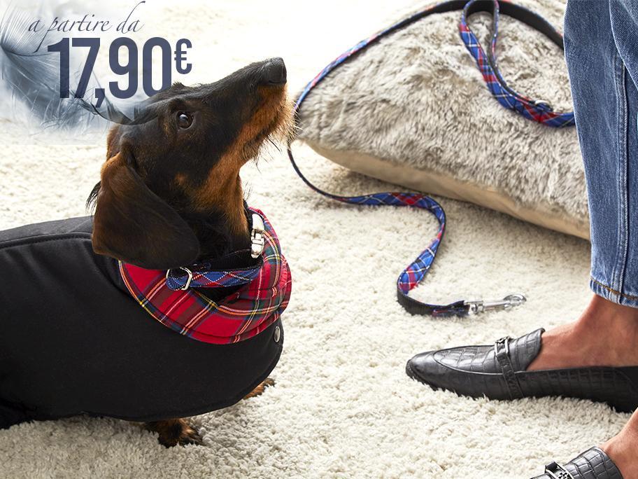 Accessori per Cani da 17,90€