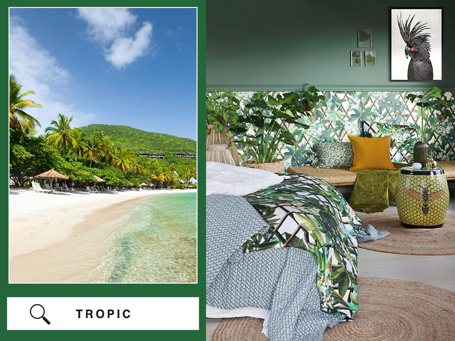 Wirtuale podróże: Tropiki
