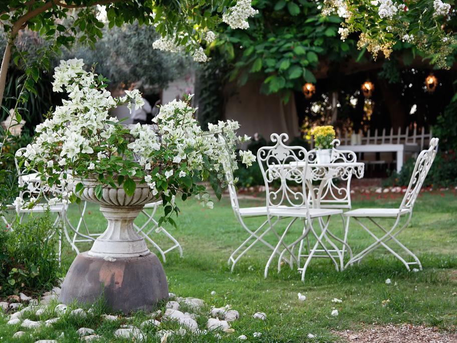 Ogród budzi się do życia