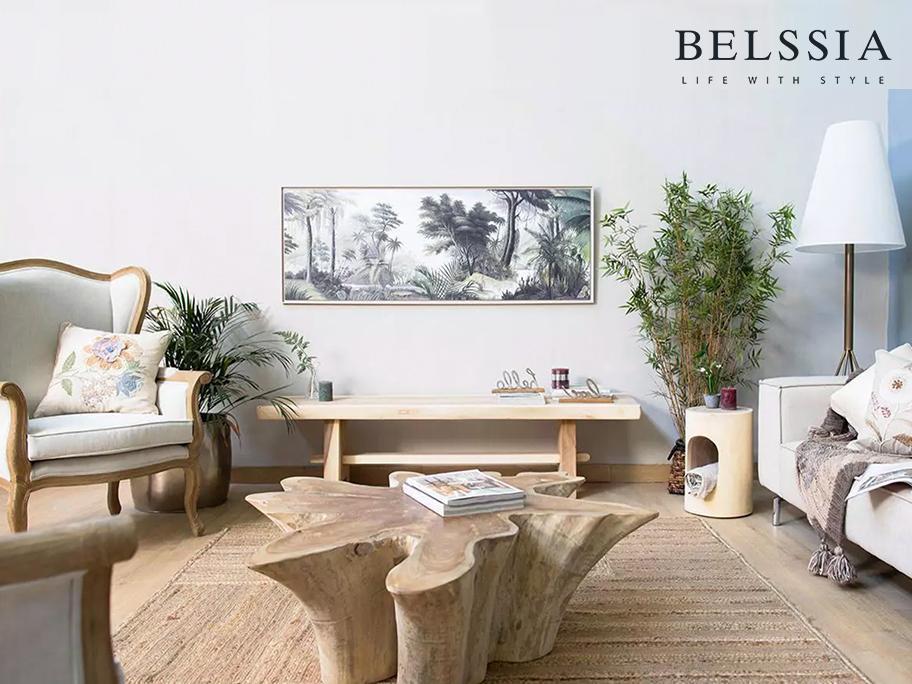 Belssia